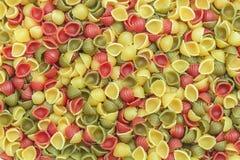 Multicolor shell pasta Stock Photos