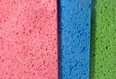 Multicolor Sponge Texture, Close-up Stock Photography