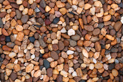 multicolor stone background Royalty Free Stock Image