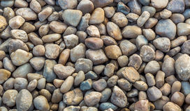 Multicolor stone pebbles for background textures. Royalty Free Stock Images
