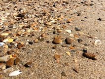 Multicolor stones and shells Royalty Free Stock Photo