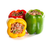 Multicolor stuffed bell pepper filled with ground meat, rice, on Royalty Free Stock Photography