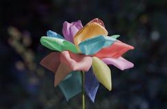 Multicolor subió Imagen de archivo