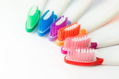 Multicolor toothbrushes Stock Image
