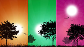 Multicolor Trees Background Stock Photography