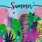 Multicolor trendy tropical summer background, exotic leaves. Vector botanical illustration, design elements. Multicolor trendy tropical summer background Royalty Free Illustration