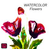 Multicolor Watercolor Vector Flowers royalty free illustration