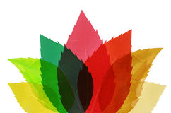 Multicolored abstract leaves Stock Photo