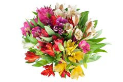 Multicolored alstroemeria lilies flowers round bouquet on white background isolated closeup stock photo