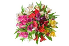 Multicolored alstroemeria lilies flowers round bouquet on white background isolated closeup stock images