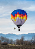 Multicolored Balloon in the blue sky Stock Image