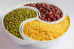 Multicolored beans in ceramics bowl. Different types of Multicolored beans in white ceramics bowl Stock Image