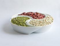 Multicolored beans in ceramics bowl. Different types of Multicolored beans in white ceramics bowl Royalty Free Stock Image
