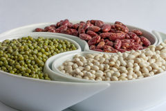 Multicolored beans in ceramics bowl. Different types of Multicolored beans in white ceramics bowl Royalty Free Stock Photos