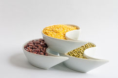 Multicolored beans in white ceramics bowl. Different types of Multicolored beans in white ceramics bowl Stock Images