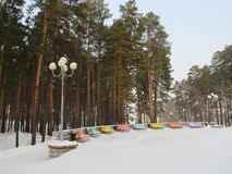 Multicolored benches on the snow in a city park royalty free stock photos
