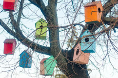 Multicolored birdhouses on the branches of a tree Stock Image