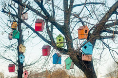 Multicolored birdhouses on the branches of a tree Stock Photo