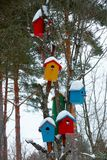 Multicolored birdhouses on tree in winter Stock Photography
