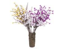 Multicolored bloemen in een vaas op witte achtergrond wordt geïsoleerd die Royalty-vrije Stock Afbeelding