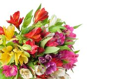 Multicolored bloemen van alstroemerialelies om boeket op witte achtergrond ge?soleerde close-up royalty-vrije stock foto
