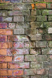 Multicolored brick wall Stock Images