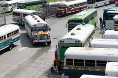 Multicolored buses. Wait in a parking lot Royalty Free Stock Image