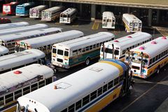 Multicolored buses. Wait in a parking lot Royalty Free Stock Images