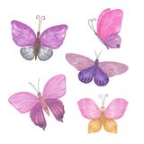 Multicolored butterflies set watercolor illustration violet, pink, blue, red, yellow, simple hand drawn colorful clipart for cards