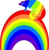 Multicolored chameleon on a rainbow. Multicolored chameleon sitting on a rainbow Royalty Free Stock Photos