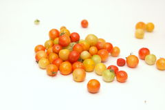 Multicolored cherry tomatoes. On a white background Stock Images