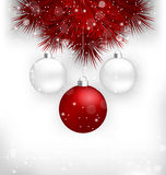 Multicolored Christmas balls on red pine branches Royalty Free Stock Photography