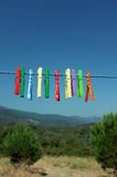 Multicolored clothespin hanged on a blue cord Royalty Free Stock Image