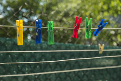 Multicolored clothespins on the clothesline. Colorful pegs on the green background Stock Photography