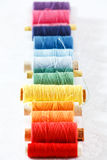 Multicolored coils of strings Royalty Free Stock Images
