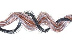 Multicolored computer cable Stock Image