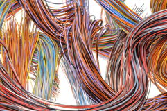 Multicolored computer cables Stock Image