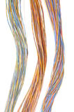 Multicolored computer cables Royalty Free Stock Photography