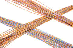 Multicolored computer cables Stock Photos
