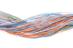 Multicolored computer network cable Stock Photography