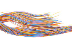 Multicolored computer network cable Stock Images