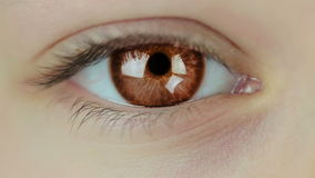 Multicolored Contact Lenses. Seamless Loop Royalty Free Stock Photos