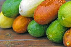 Multicolored cucumbers Stock Photo