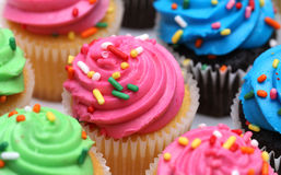 Multicolored Cupcakes Stock Images