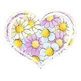 Multi-colored daisies on a white background. Multicolored daisies in the form of heart on a white background Stock Image
