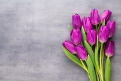 Multicolored de lentebloemen, tulp op een grijze achtergrond stock foto's