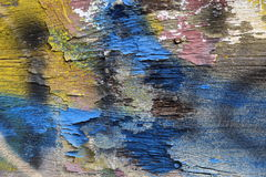Multicolored decaying wood with peeling layers of paint, rusted nails Stock Photos