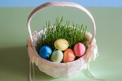 Easter eggs in a beautiful white basket with green grass royalty free stock photos