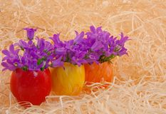 Multicolored easter eggs with flowers Royalty Free Stock Photography
