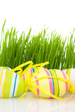 Multicolored easter eggs and grass Royalty Free Stock Photo